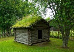 Skab et hyggeligt og klimavenligt sommerhus ved at lægge et grønt tag på