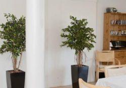 Kunstigeplanter.dk - din forhandler af kunstige planter med et levende look