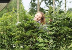 Skab privatliv og stemning i haven med en færdighæk